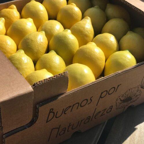 Caja limones ecológicos de Campojoyma