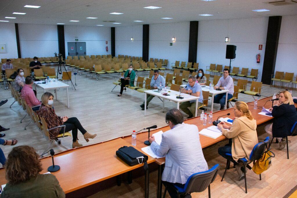 Sesión plenaria en el Ayuntamiento de Níjar.