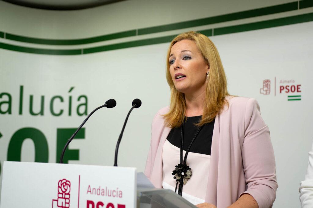 Foto Teresa Piqueras, diputada provincial