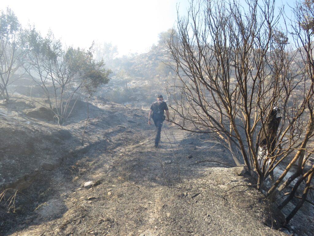 Incendio en Sierra Cabrera