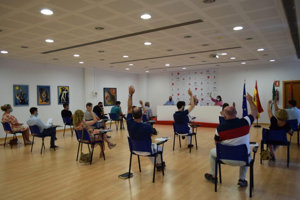 Pleno Ayuntamiento de Vícar