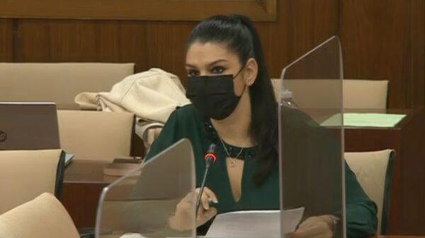 Noemí Cruz, en la Comisión de Salud y Familias del Parlamento de Andalucía