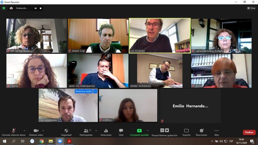 Reunión telemática de la Federación Provincial de Comercio de Asempal