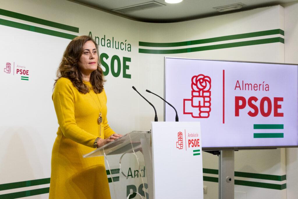 Carmen Aguilar, diputada provincial del PSOE de Almería.