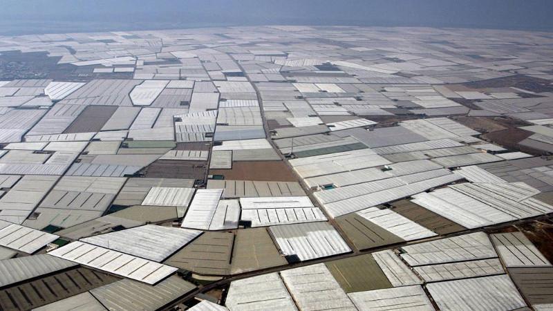 Vista de invernaderos en la provincia de Almería