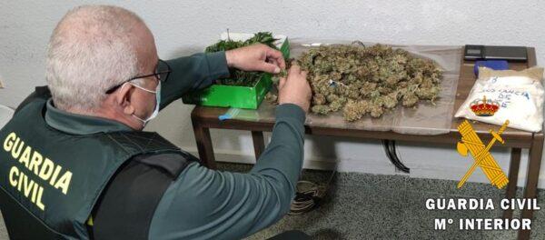 Plantación indoor en Vícar.