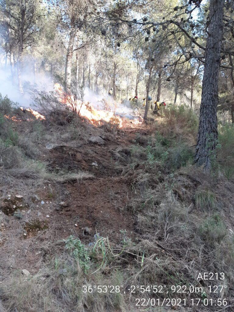 Imágenes del Infoca sobre el incendio forestal en Castala