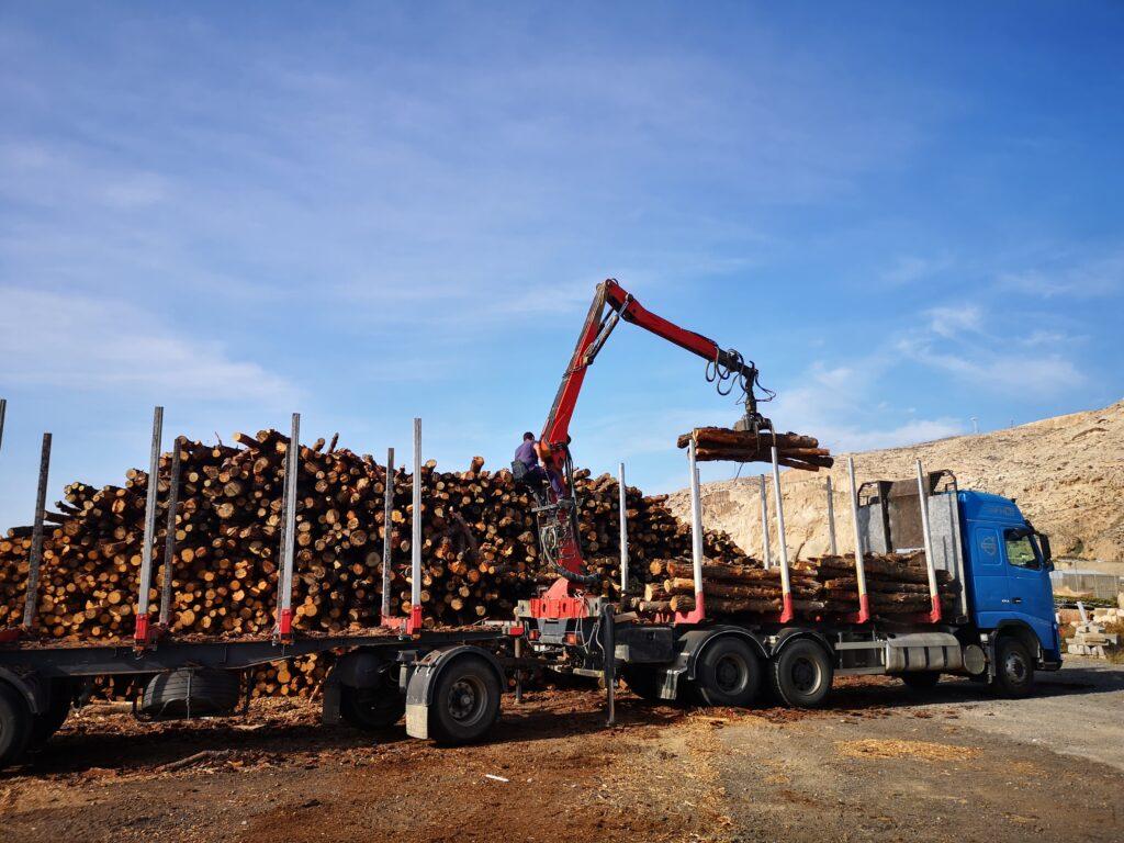 Transporte de madera en el puerto.