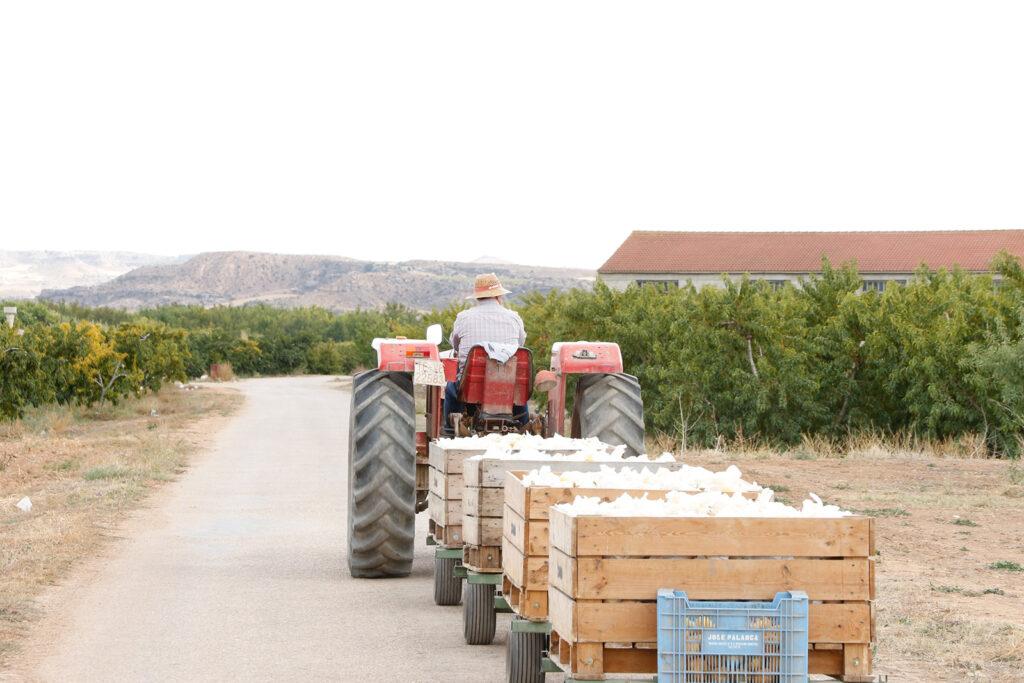 Agricultor con su material cosechado