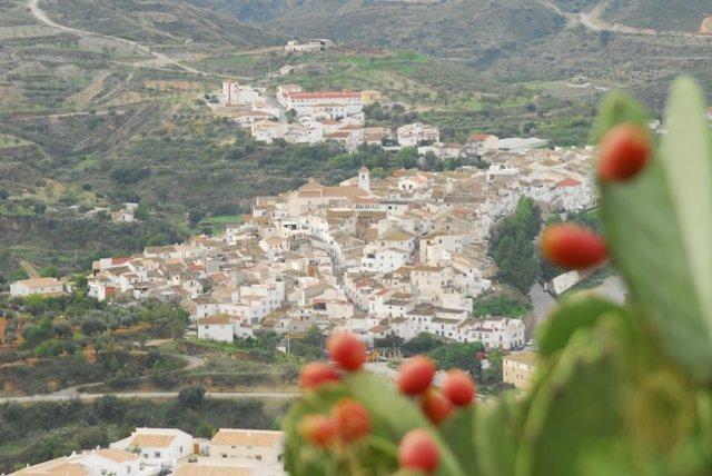 Vista de Albanchez