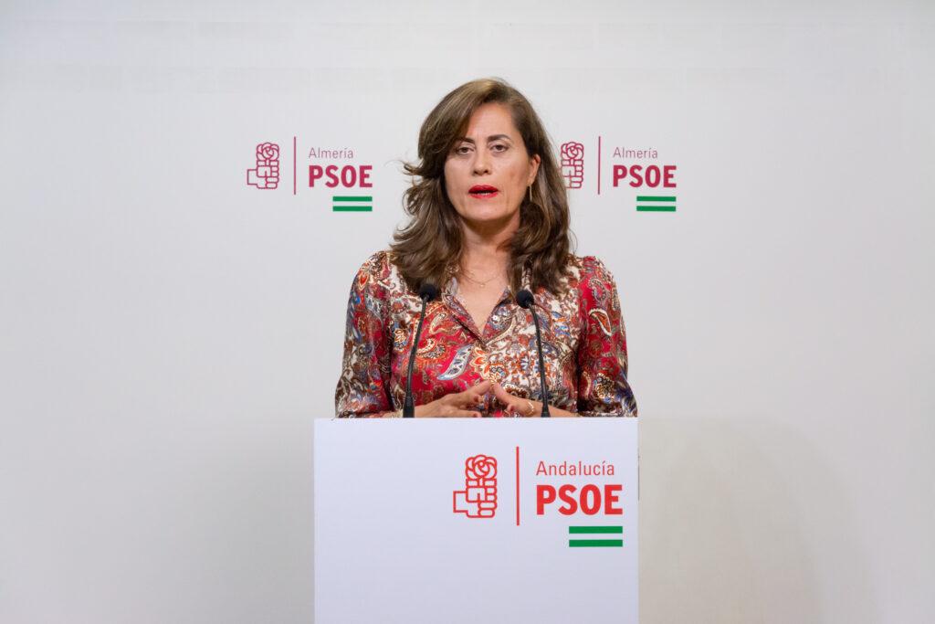 210429 Foto PSOE Diputación. Carmen Aguilar