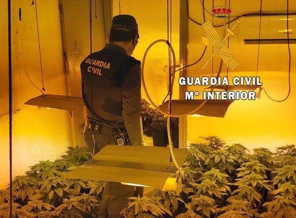 Marihuana en Roquetas.