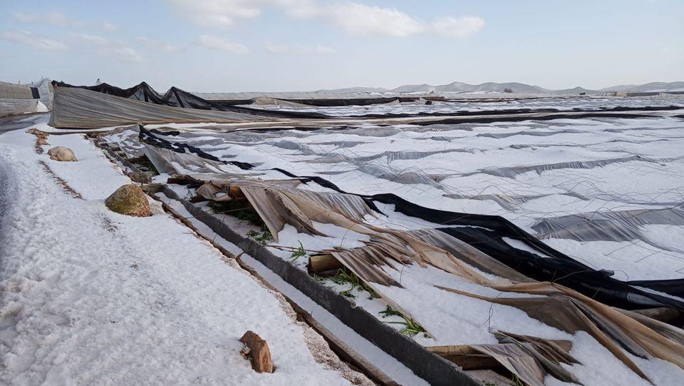 Invernaderos destrozados por el temporal.