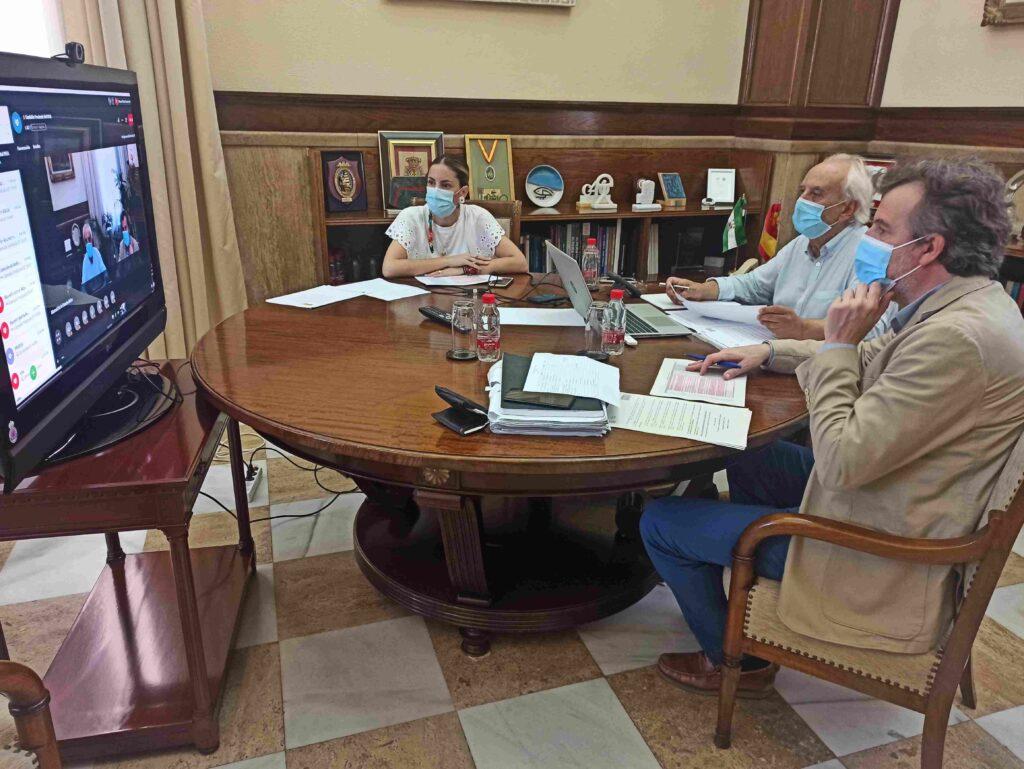 Reunión telemática de la Comisión Provincial del PFEA
